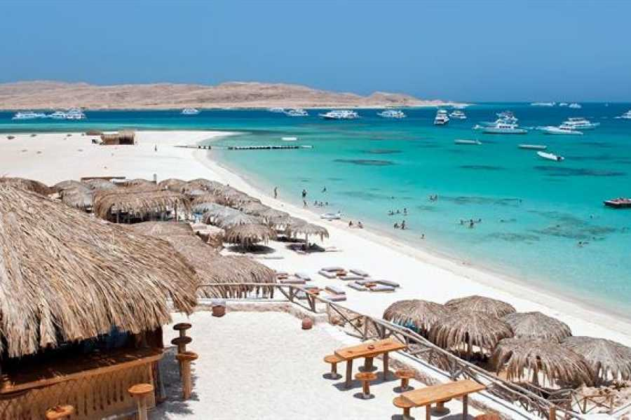 Marsa alam tours Private transfer from aswan hotel to Marsa alam hotel