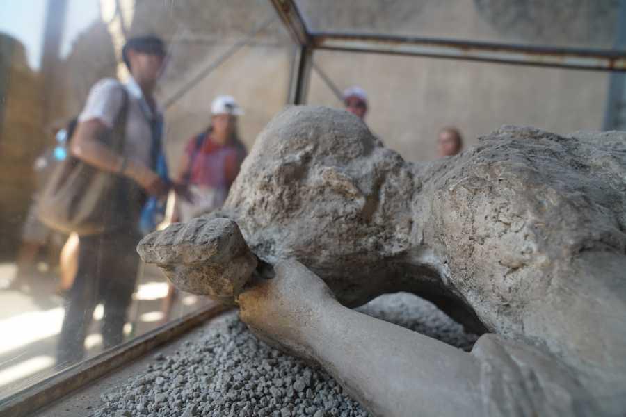 Travel etc Skip The Line Pompeii Guided Tour & Mt. Vesuvius Volcano from Naples