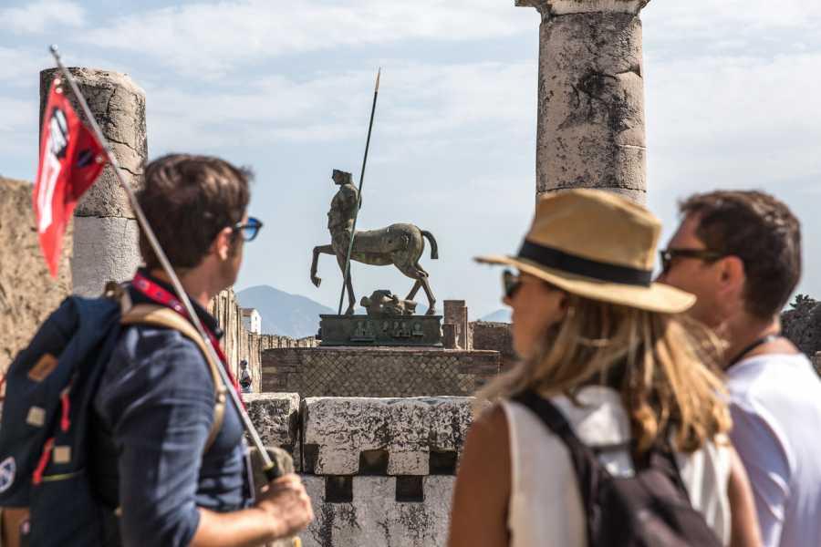 Travel etc Tour guidato di Pompei e il Monte Vesuvio da Napoli