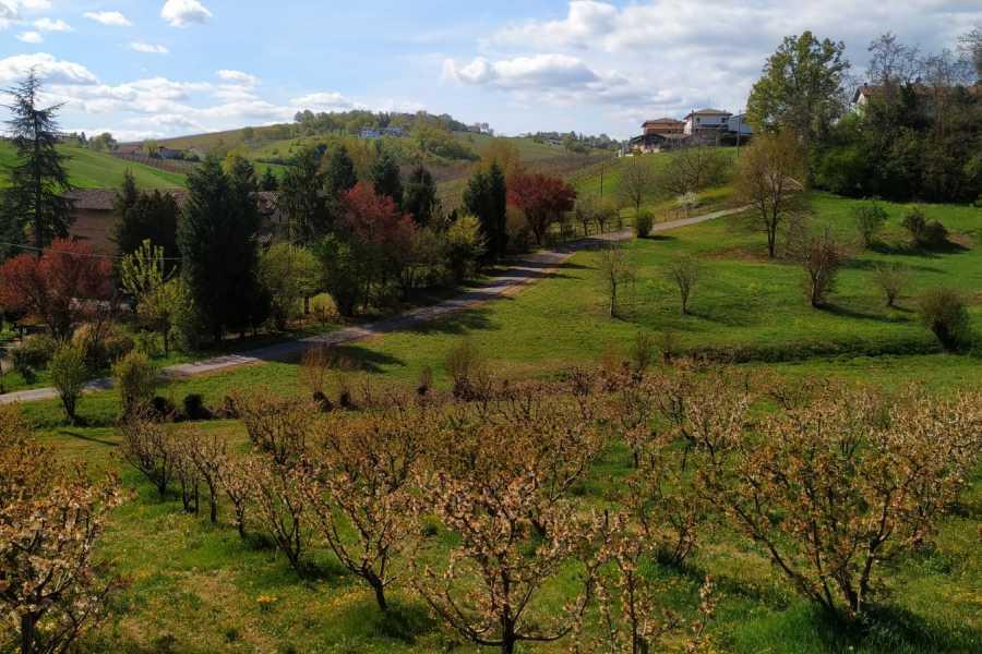 Modenatur PedaliaMO sulle colline di Castelvetro