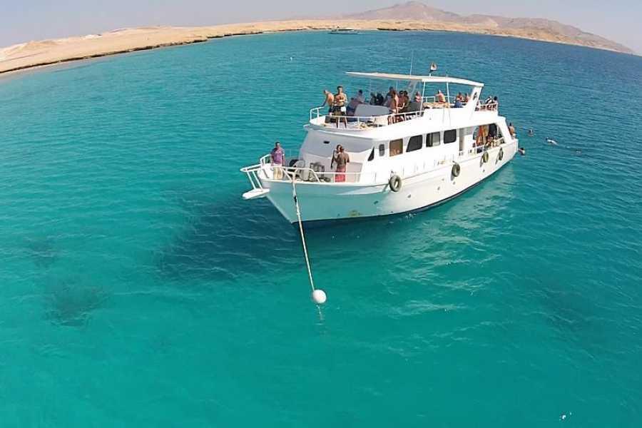 Marsa alam tours Mahmya Island Snorkeling trip from El Gouna | Mahmya island from El Gouna