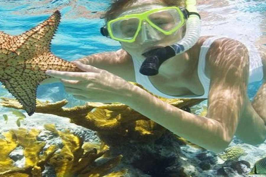 Daily tours Egypt Hamata Island Snorkeling Tour From Port ghalib