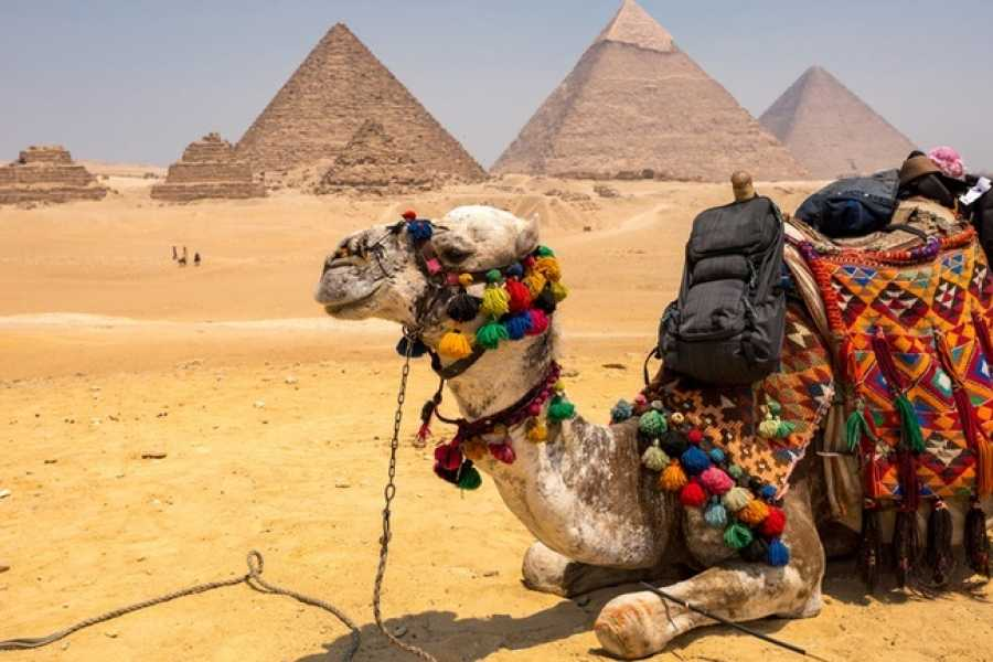 EMO TOURS EGYPT Family 3 Days package in Egypt