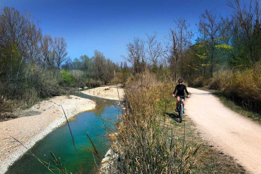VisitRimini Panoramic Bike Nic