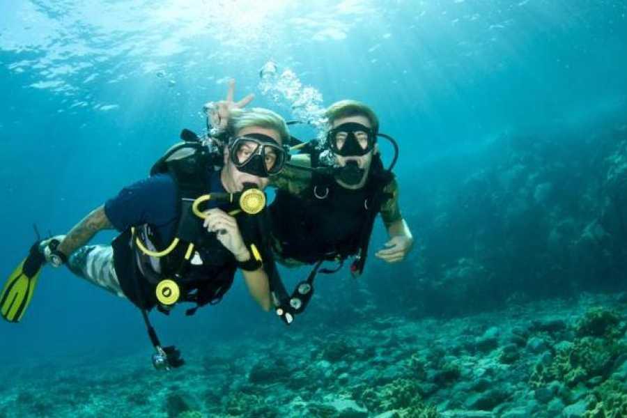 Daily tours Egypt Padi scuba diving in Port ghalib