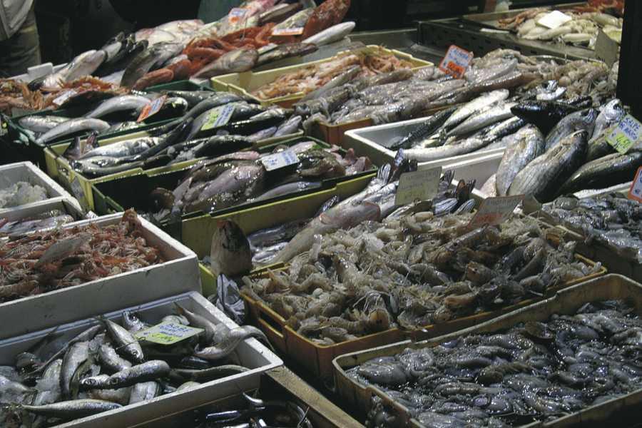 """VisitRimini La """"Borsa del pesce"""": un'alba insolita"""