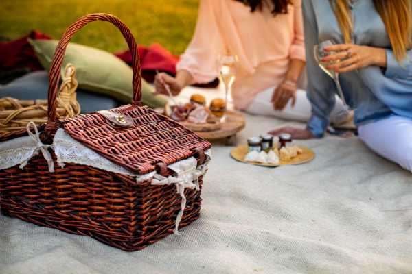 The Wednesday Pic Nic