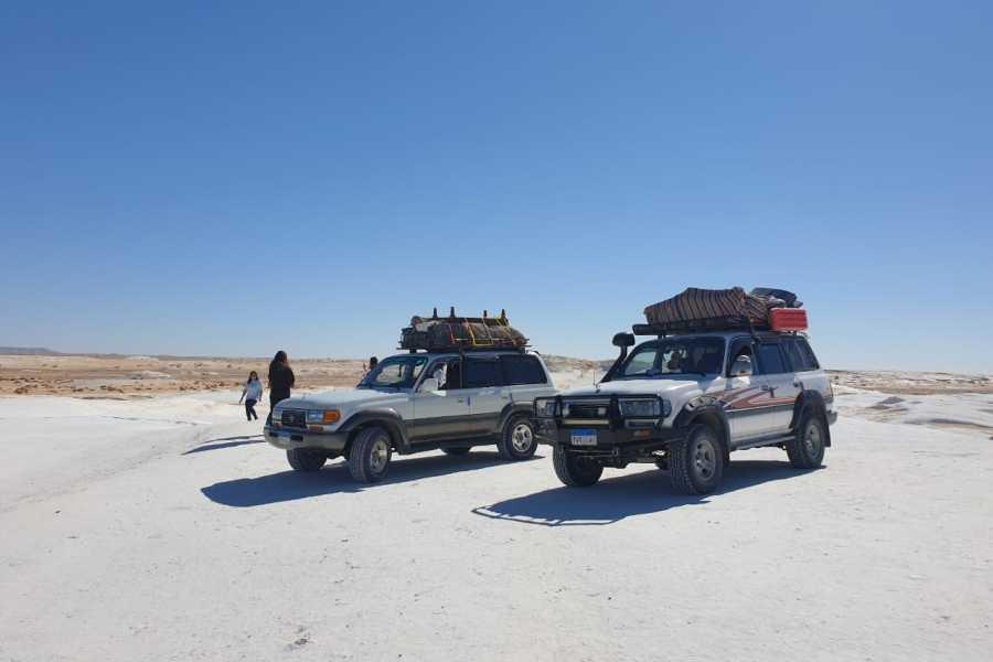 EMO TOURS EGYPT 10 Days 09 Nights Cairo, Nile Cruise Tour & OVERNIGHT TOUR TO BAHARIYA OASIS