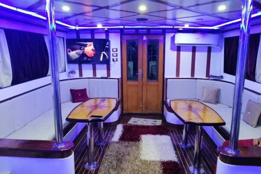 El Gouna Tours private Boat Trip White Island Sharm el Sheikh   Ras Mohamed