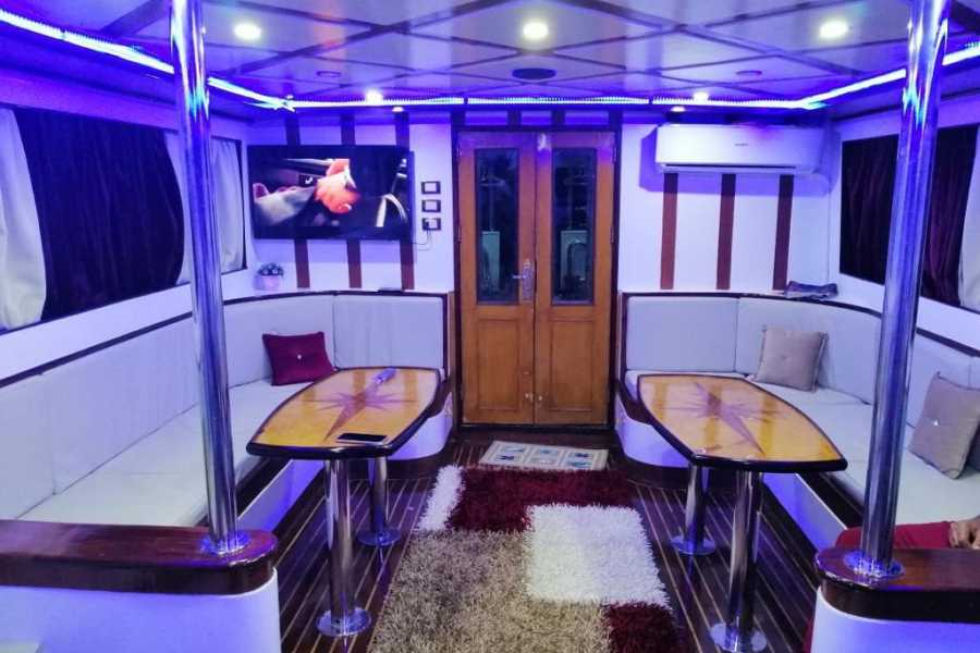 Excursies Egypte private Boat Trip White Island Sharm el Sheikh | Ras Mohamed