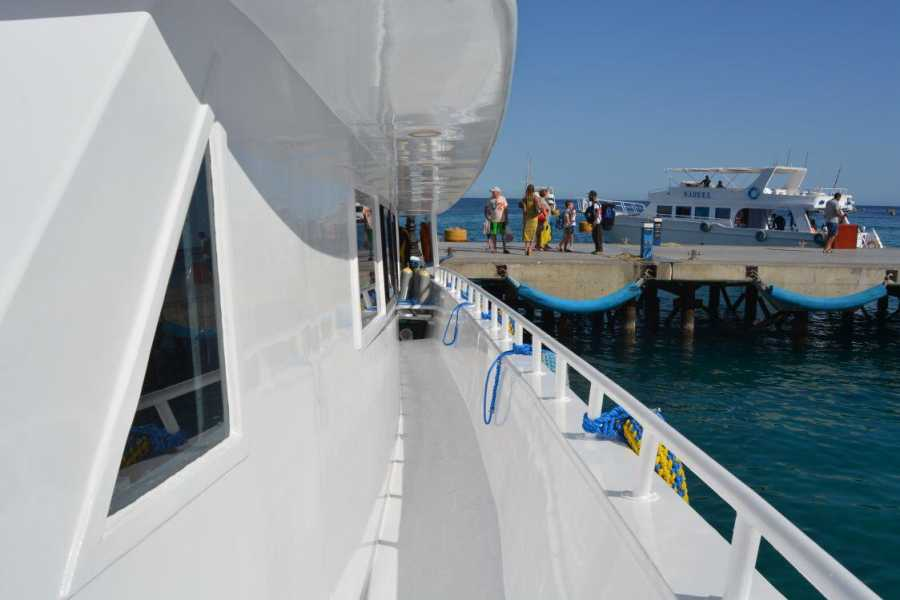 Marsa alam tours Private Full-day Snorkeling Boat to Tiran Island from Sharm El sheikh