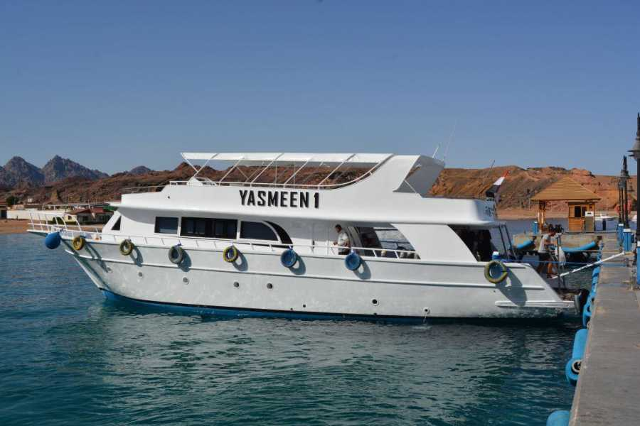 Excursies Egypte Private Full-day Snorkeling Boat to Tiran Island from Sharm El sheikh