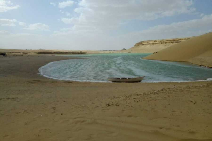 Marsa alam tours Day Trip to Wadi Al Hitan whales valley from Fayoum oasis