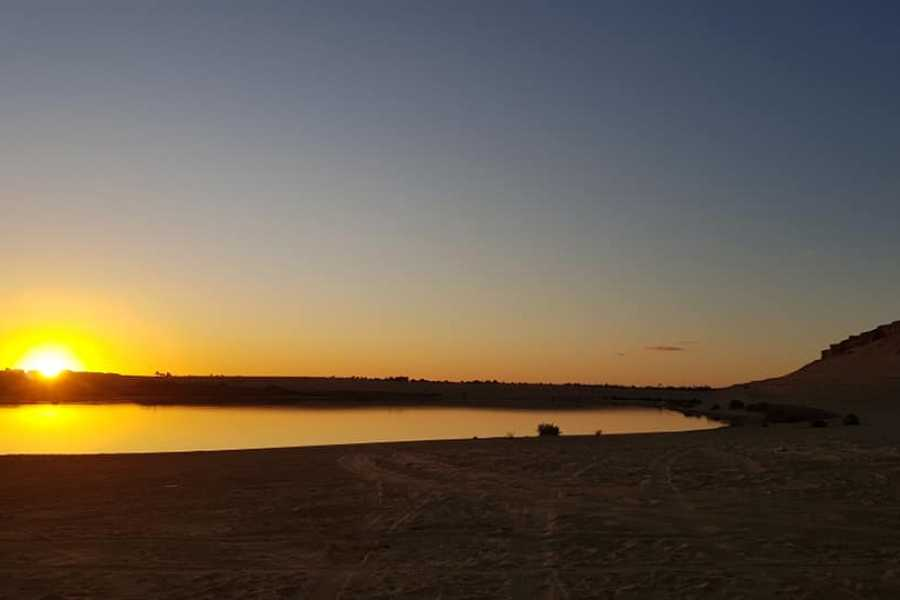 Marsa alam tours 2 Day trip Camping trip to Wadi el Hitan from Fayoum
