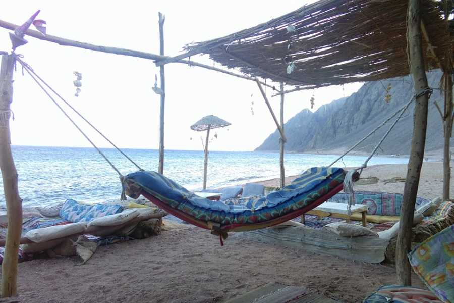 EMO TOURS EGYPT Private Day Tour To Three Pools AT Dahab Snorkeling, Camel Ride With Lunch From Dahab