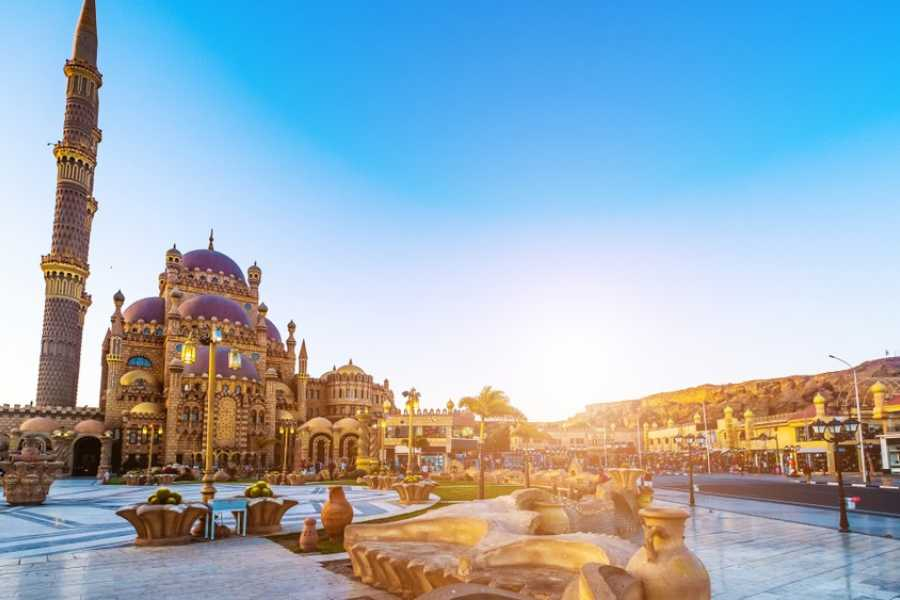 EMO TOURS EGYPT Full Day Relaxing In Sharm  El Sheikh From Taba