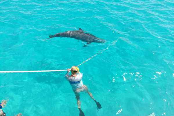 4-Hour Power Catamaran 3 Stop Group Tour from Providenciales