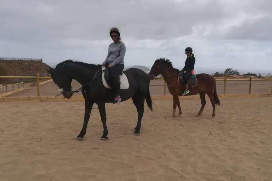 Hipica Canaria Lezioni di equitazione