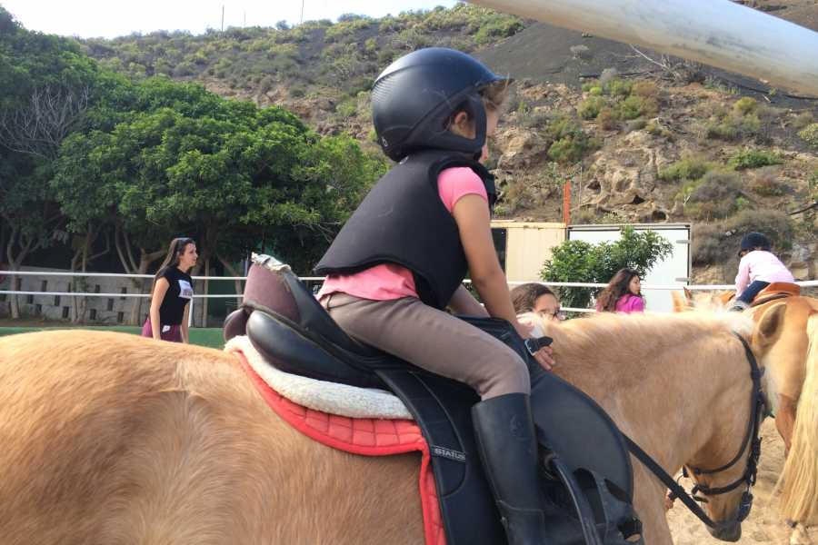 Hipica Canaria Childrens Camp