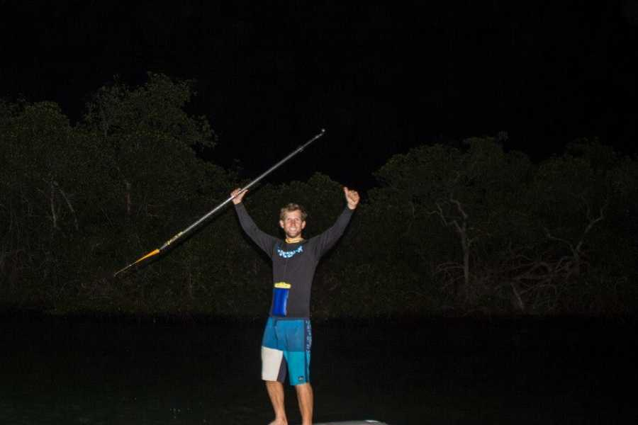 Stand Up Paddle Tobago Bioluminescence Tour