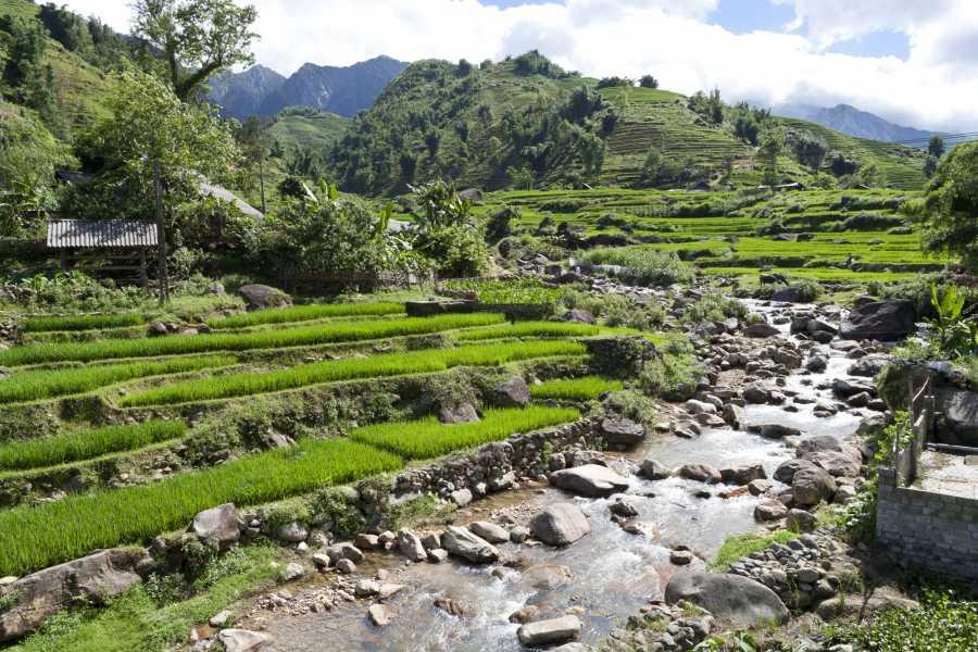 Friends Travel Vietnam Sapa - Halong Bay Experience 6 days