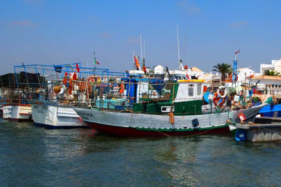 Sequa Tours - Ria Formosa Boat Tours Lagoon & Fishing Villages Discovery Tour