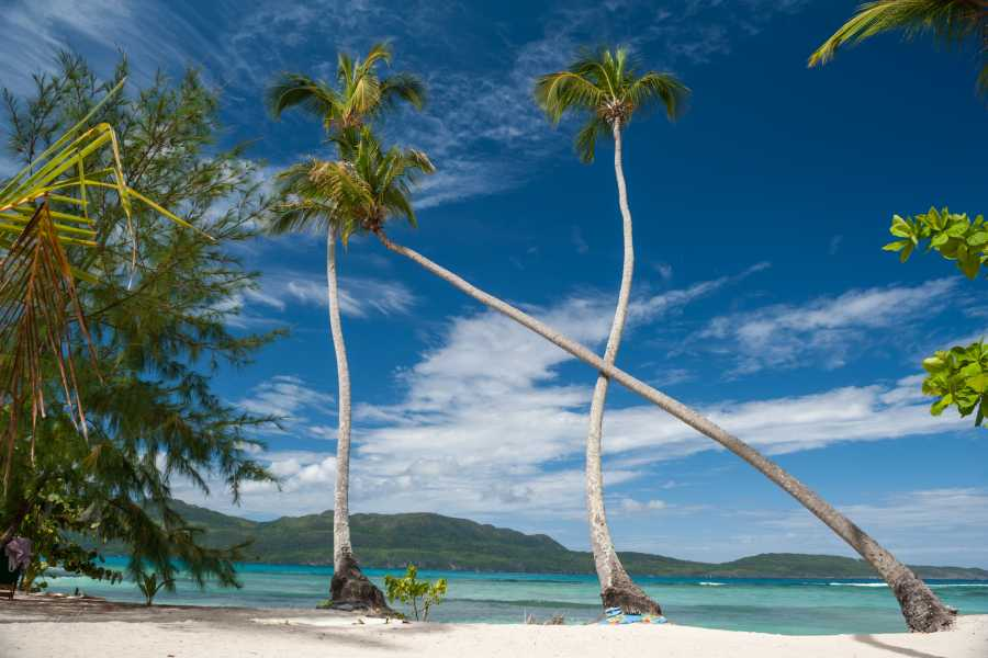 Tour Samana With Terry HOTEL EXCURSION #2: VIP Option: Four Beaches Speedboat Tour & Lobster Lunch
