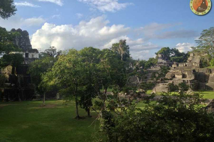 Maya World Tours Tikal One Day Tour Air + Lunch