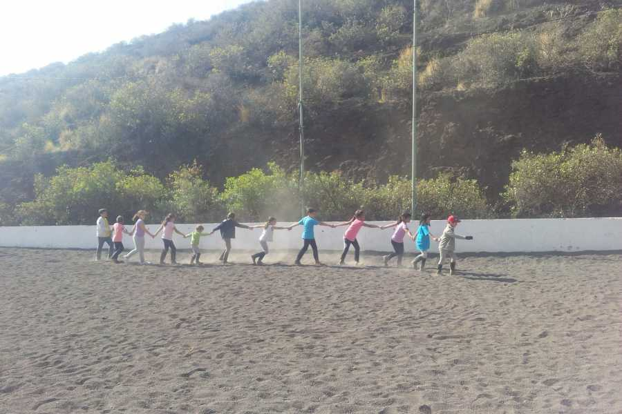 Hipica Canaria School Groups