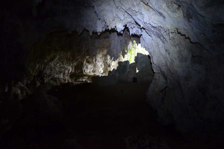 MyVacationButlers.Com Cave Park Jungle Adventure - Camuy/Lares PR