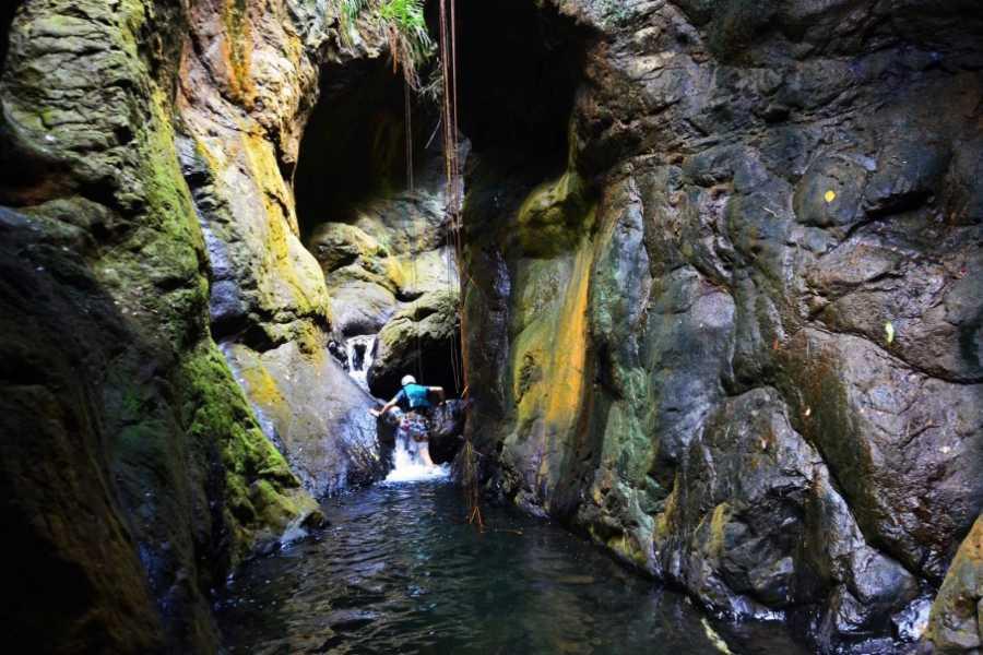 MyVacationButlers.Com Cave Park Jungle Adventure - Camuy/Lares PR