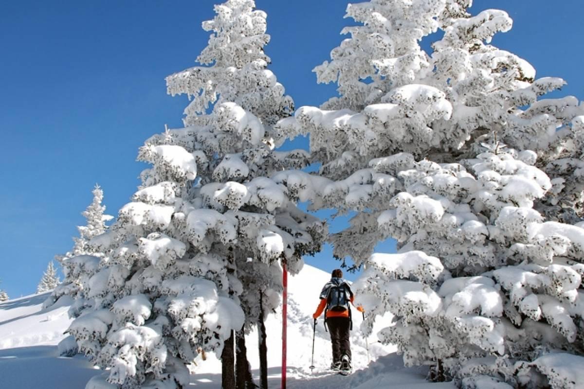 Andermatt Adventure - Crown of Alps AG Schneeschuhwandern (4h) mit Fondue & Übernachtung