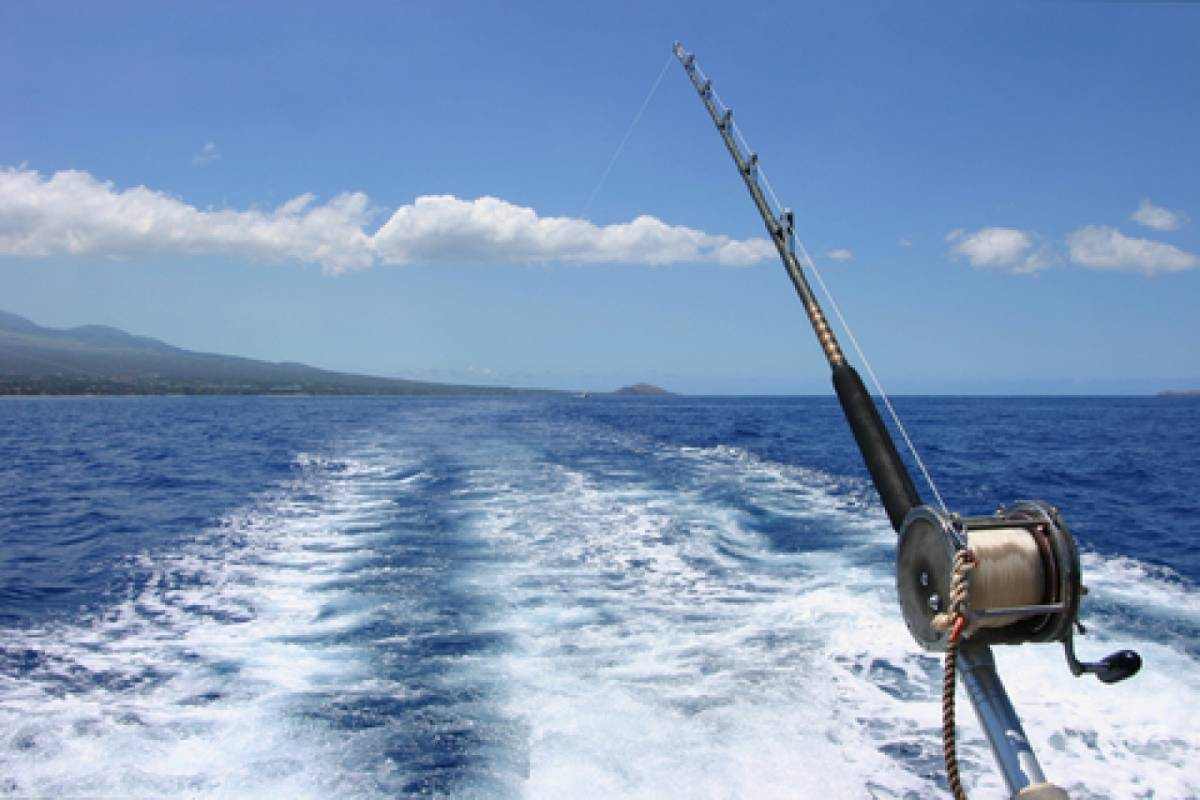 Blue Waters Caribbean Adventures Deep Sea Fishing