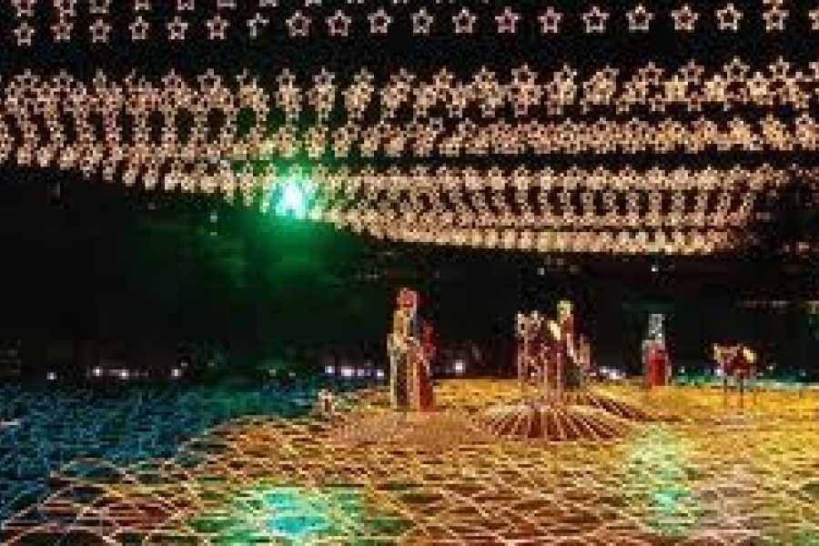 Medellin City Tours CHRISTMAS LIGHTS TOUR