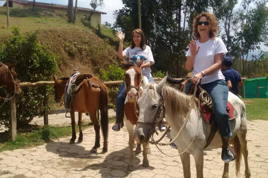 Medellin City Services Horseback Riding Adventure from Medellin