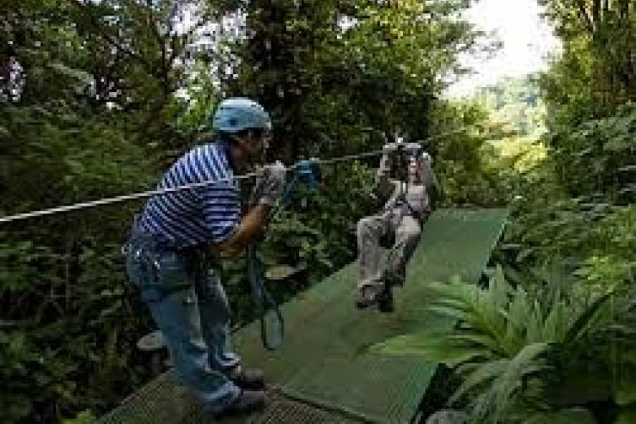 Medellin City Tours Private Zip Lines