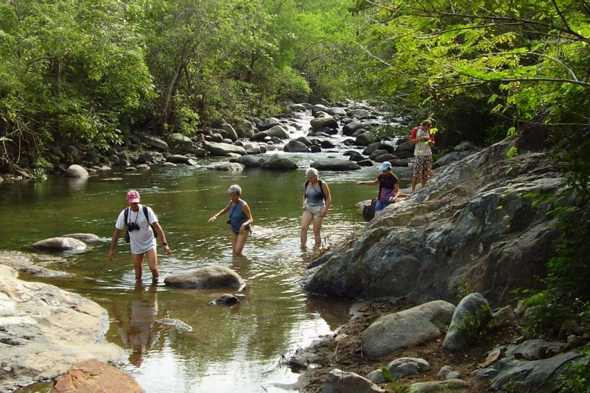 COSTA NATIVA ECOTOURS RIVER HIKE AT THE LOWER SIERRA MADRE