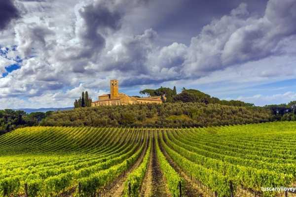 'Tuscan Wine Tour' - Full day