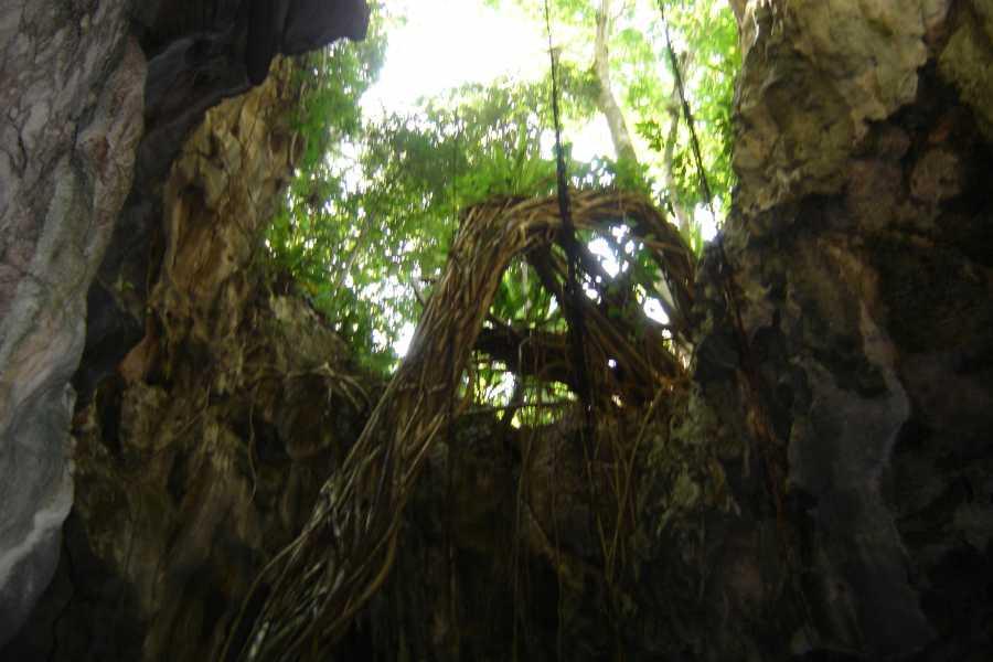 Tour Samana With Terry Hotel Excursion #9 Los Haitises National Park+Cayo Levantado Beach Tickets