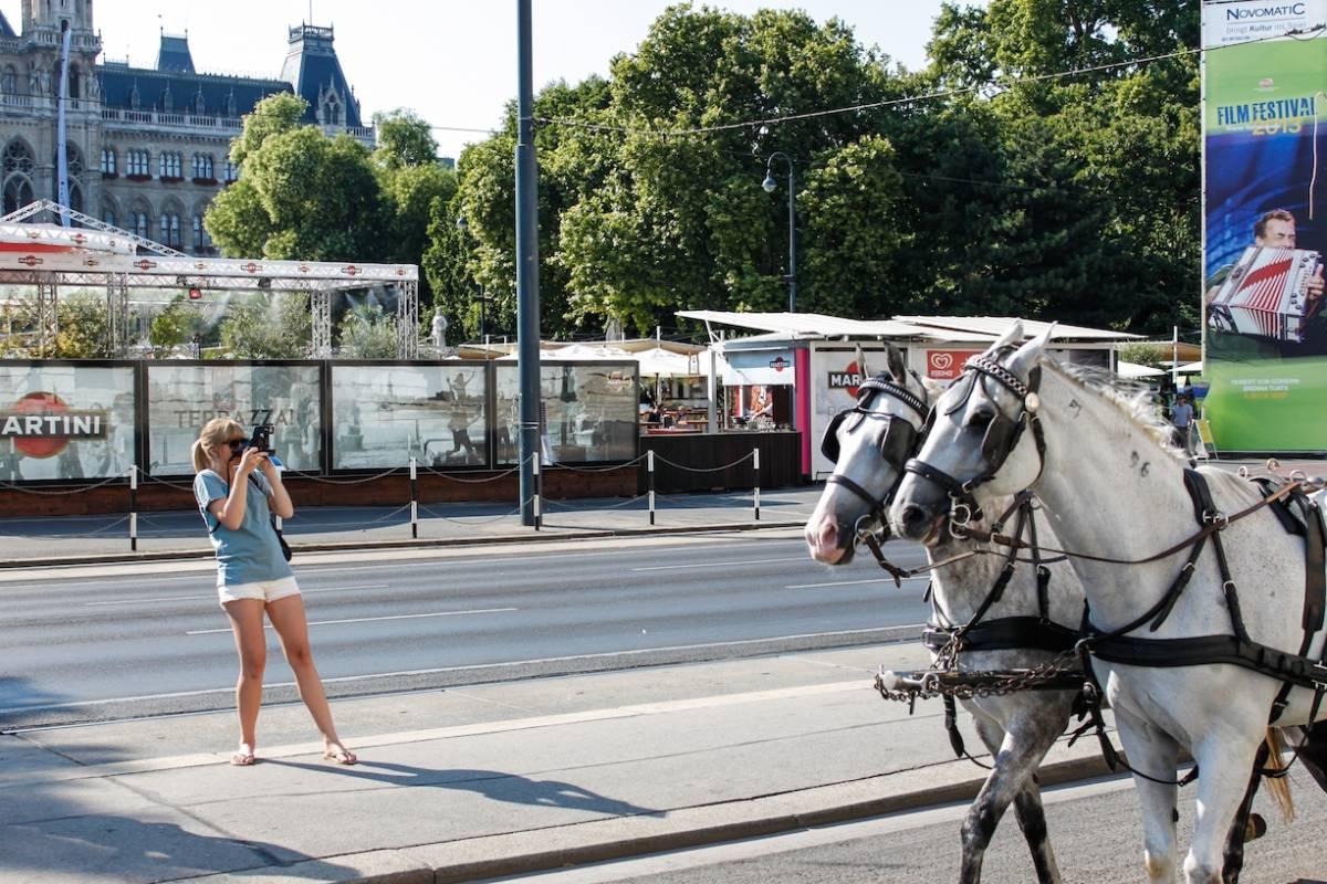 Sophort Custom Instant Tour - Vienna