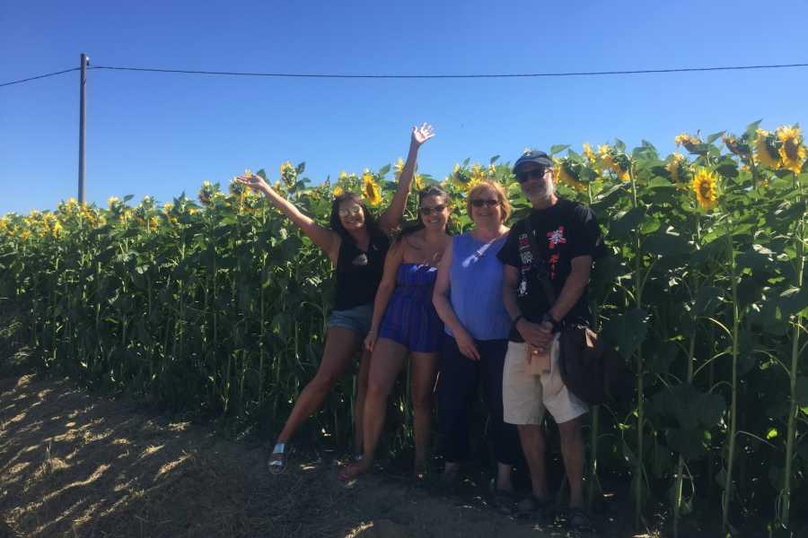 Tuscanmagic Di Dng srl Hd Wine Tour 'Following Wine Roads'
