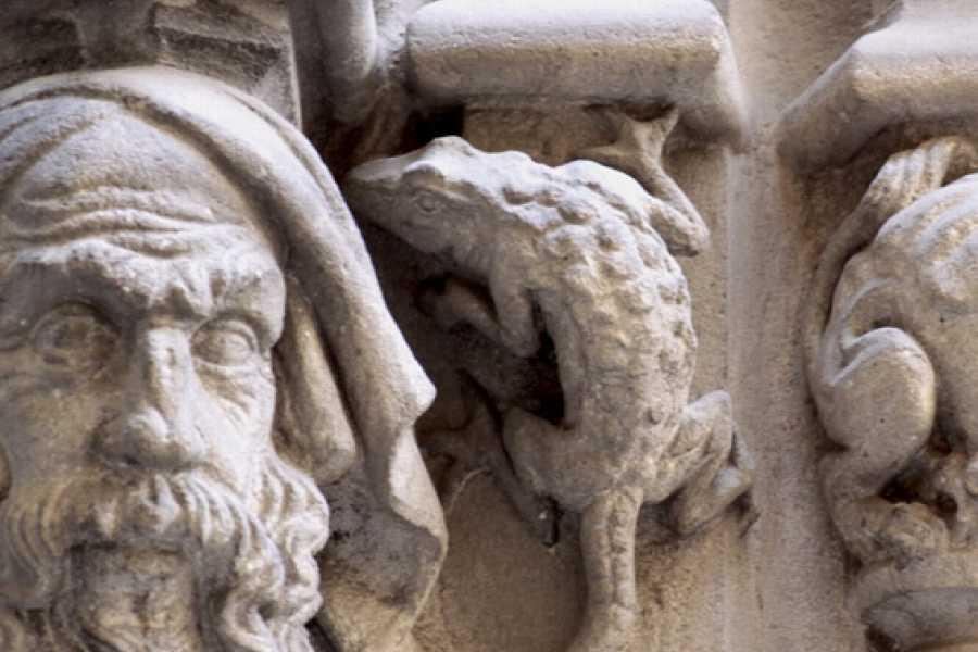 ICONO Serveis Culturals Drakcelona Familiar, La Gincana de los Dragones