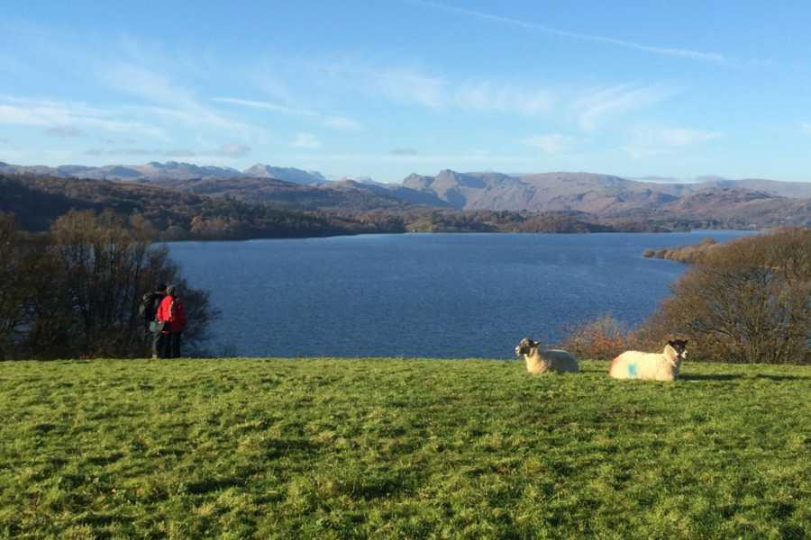 Lake District Tours TOUR B - 湖水地方ツアー&ハイキング. 湖水地方の自然満喫!