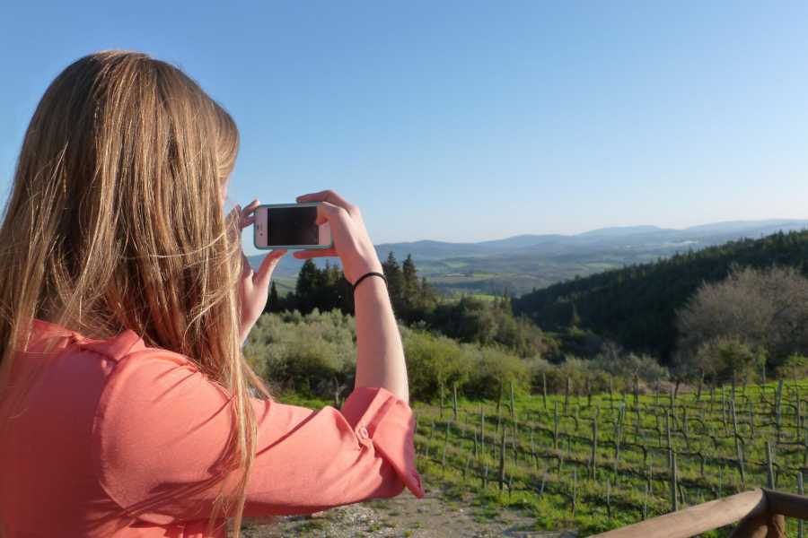 Tuscany on a Budget tours THE TASTE OF TUSCANY with dinner at a Tuscan farm