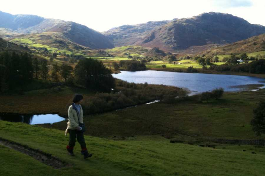 Lake District Tours TOUR B - Lake District Tour n Hike Excursion 1 from London