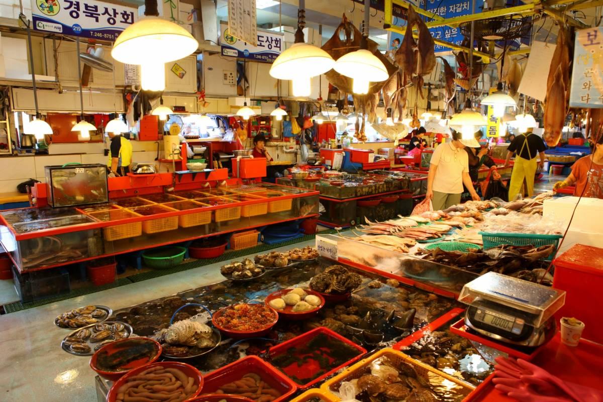Kim's Travel 36 Visite de nuit de la ville de Busan