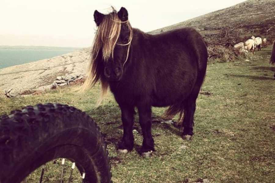 North Clare Sea Kayaking/Burren Way Mountain Bike Tours 7. MTB - Lord of the Rings Burren Tour