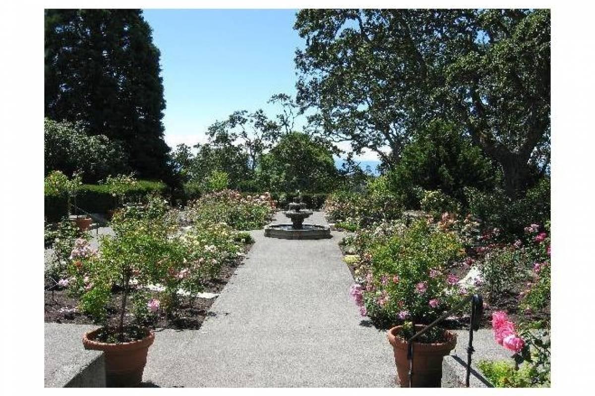 Victoria Pedicab Company Castle and Queen's Gardens
