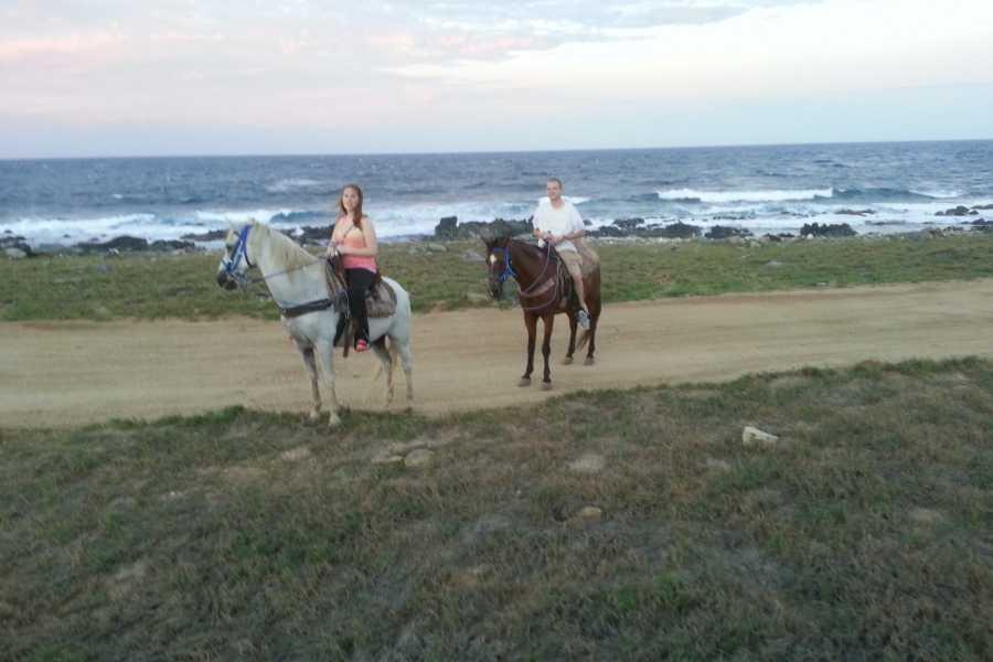 I-land Aruba Tours Western Morning Arikok National park & Beach Ride 8:45am /11:00am