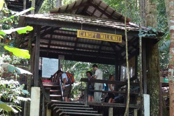 1 DAY TOUR the RAINFOREST - TAMAN NEGARA bonus stop BATU CAVES